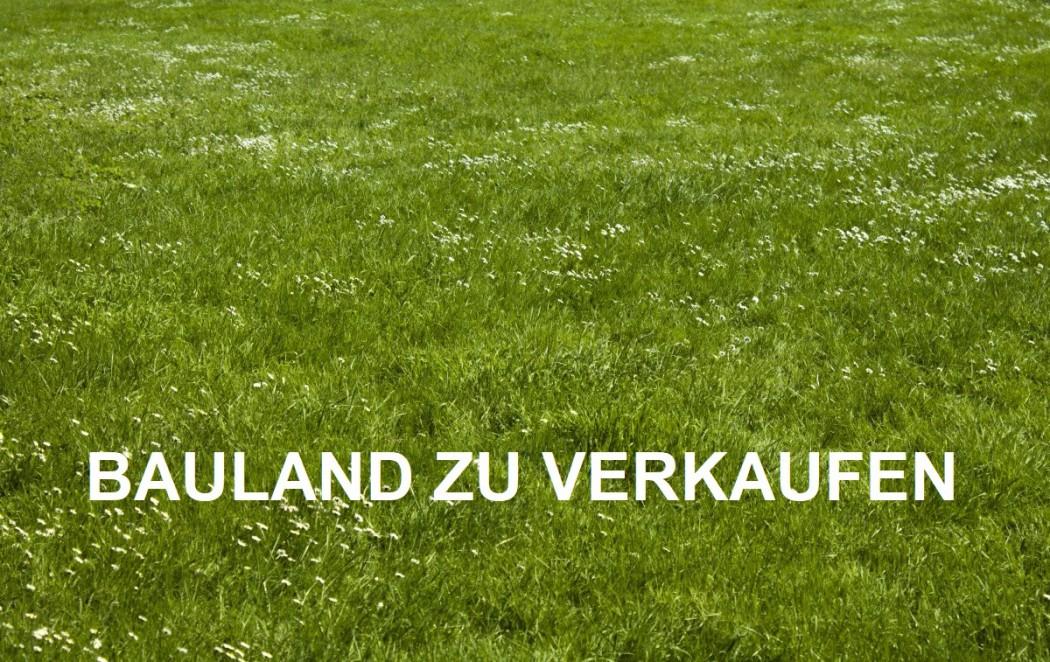 Wiese_Lizenzfrei
